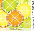 Citrus slice background/card in vector format. - stock vector