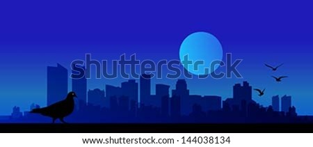 City View, Vector