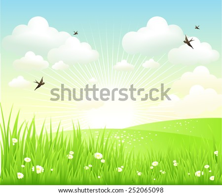 Clean spring amazing scenery. Vector illustration - stock vector