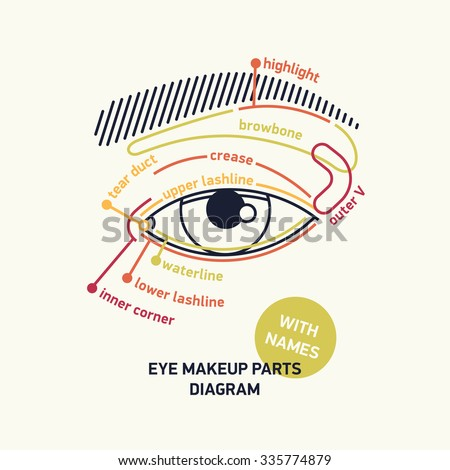 Clean stylish linear vector eye parts stock vector 335774879 clean stylish linear vector eye parts diagram for makeup with names ideal for fashion ccuart Gallery