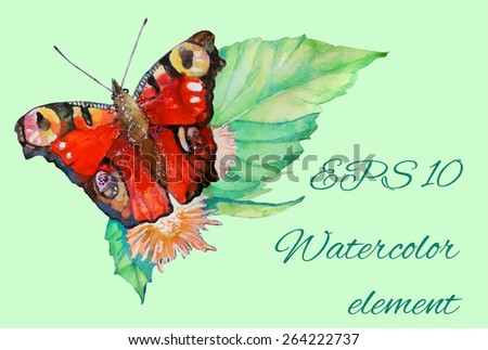 close look image of butterfly on a leaf in watercolor