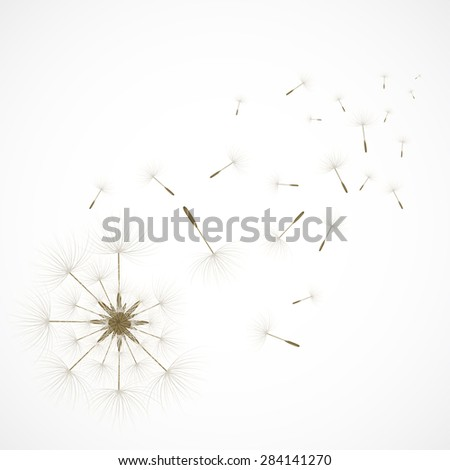 Close-up of abstract dandelion with sparse of seed. Vector illustration for graphic design. - stock vector