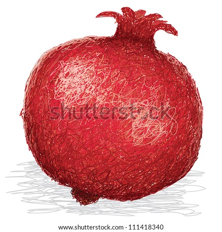closeup illustration of ripe pomegranate fruit isolated in white background. - stock vector