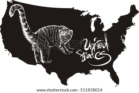 Coati And U S Outline Map Black And White Vector Ilration