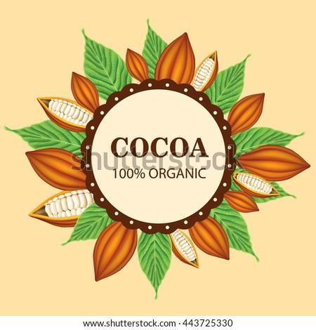 Cocoa illustration - stock vector
