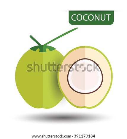 Coconut, fruit vector illustration