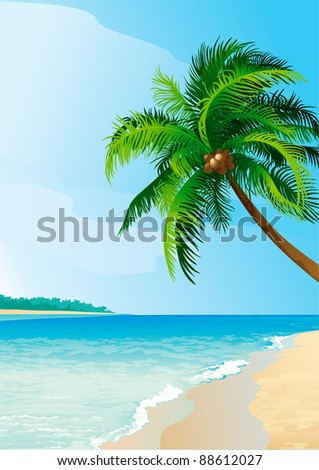 Coconut palm tree . Vector illustration  of coconut palm tree on tropical beach. Vertical format. - stock vector