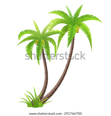 Coconut palm trees isolated on white, vector illustration - stock vector