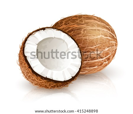 Coconut tropical nut fruit with cut. Vector illustration isolated white background. Coco nut fruit broken shell with milk - stock vector