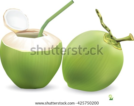 Coconut Water Drink, Green coconut isolated on white background.vector