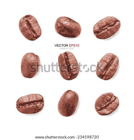 Coffee Beans collection on white background. Vector illustration. - stock vector