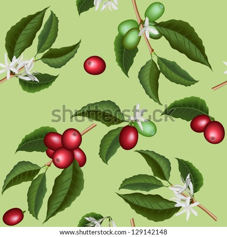 Coffee flowers and berries seamless texture - stock vector