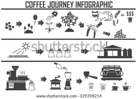 Coffee infographic flat vector illustration. Preparation coffee beans.  - stock vector