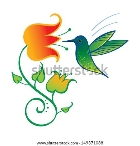 Colibri little exotic bird nature flower nectar - stock vector