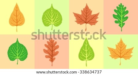Collage of wood leaves of different colors