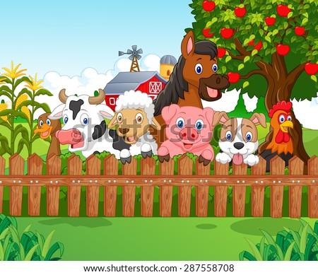 Collection farm animals  - stock vector