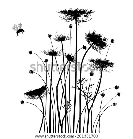 Collection for designers, meadow in summertime, plant vector - stock vector