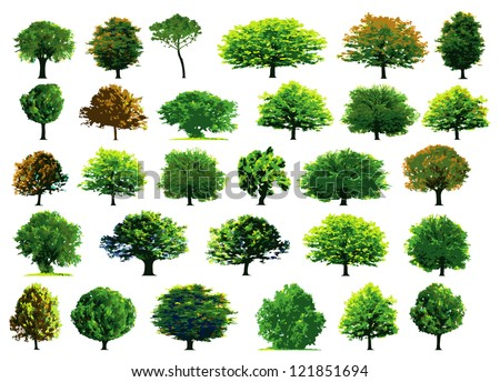Collection green trees. Vector illustration