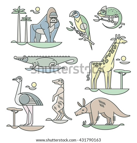 Wild Aardvark Stock Images Royalty Free Images Vectors - aardvark animal coloring pages