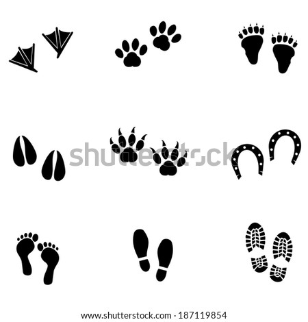 Collection of animal and human foot prints isolated on white background. VECTOR illustration. - stock vector