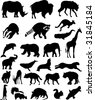 Collection of Animal Silhouettes - Set of 25 Mammals - stock vector