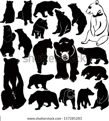 collection of animal vector bears