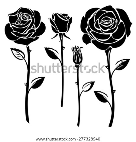 Collection of black and white roses - stock vector