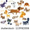 Collection of cats and dogs - stock photo