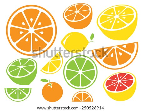 Collection of citrus slices - orange, lemon, lime and grapefruit, icons set, colorful isolated on white background, vector illustration. - stock vector