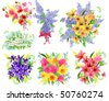 Collection of detailed beautiful bunches of flowers - stock vector