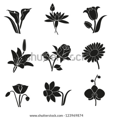 Collection of different flowers for your design.Vector. EPS-10 (non transparent elements,non gradient). - stock vector