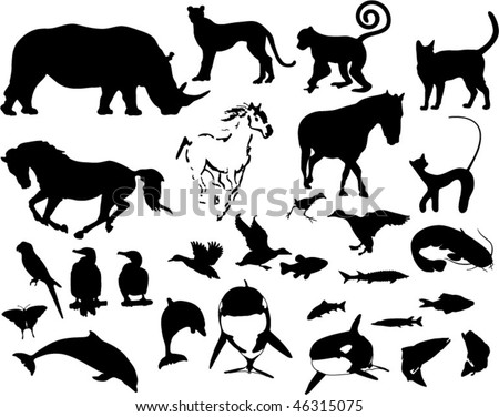 collection of different vector silhouettes of animals