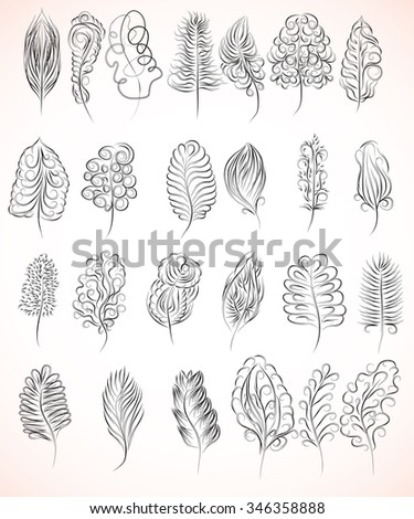 collection of feathers - stock vector