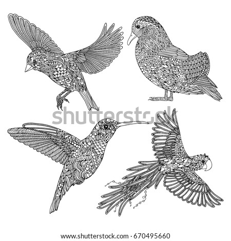 Collection Of Hand Drawn Birds Coloring Page For Adults