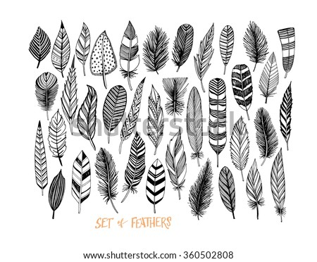 Collection of hand drawn feather. Ink illustration. Isolated on white background. Set of decorative animals feathers. Hand drawn vector art. - stock vector