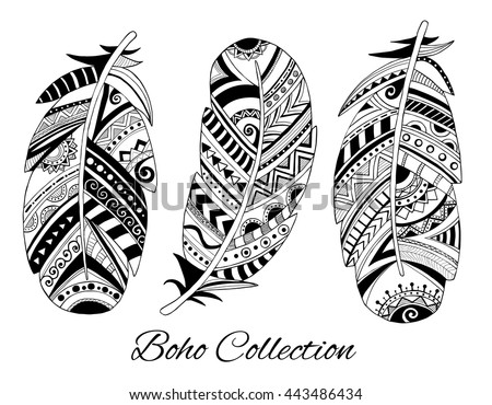 collection hand drawn feather vector ink stock vector 443486434