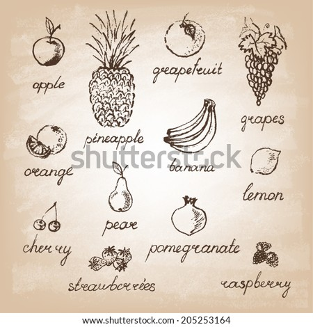 Collection of hand-drawn fruits .Retro vintage style food design. Vector illustration. - stock vector
