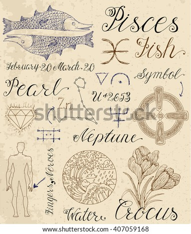 Collection of hand drawn symbols for astrological zodiac sign Pisces or Fish. Line art vector illustration of engraved horoscope set. Doodle drawing and sketch with calligraphic lettering - stock vector