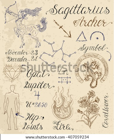Collection of hand drawn symbols for astrological zodiac sign Sagittarius or Archer. Line art vector illustration of engraved horoscope set. Doodle drawing and sketch with calligraphic lettering - stock vector