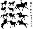 Collection of horses part 4. - stock vector