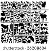 Collection of hundred vector silhouettes of different domestic and wild animals. To see similar please visit my gallery. - stock vector