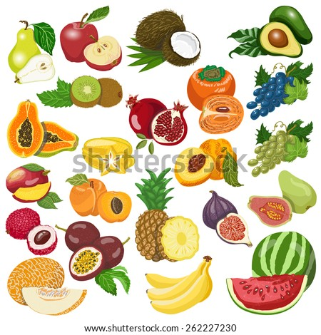 Collection of isolated fruits on white background. Vector illustration for your design - stock vector