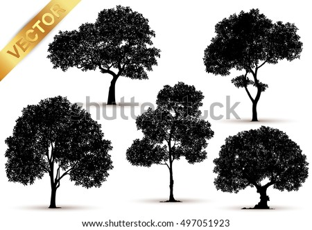 Collection of isolated tree on white background,tree with a realistic,tree on white background,Vector trees in silhouettes,Set of abstract trees,Green Oak