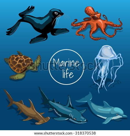 Collection of marine animals and turtle, seal, octopus, shark, fish on a dark blue background. Card with space for text in the middle - stock vector
