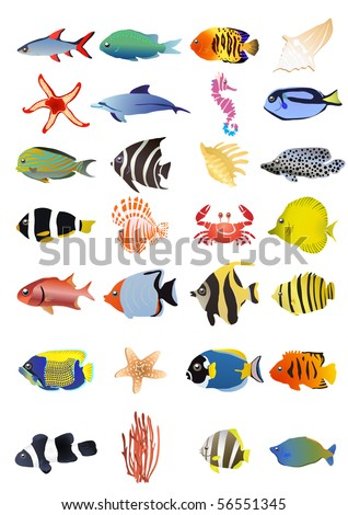 Collection of marine animals, vector illustration - stock vector