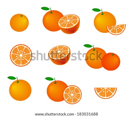 Collection of oranges, isolated on white background, vector illustration. - stock vector