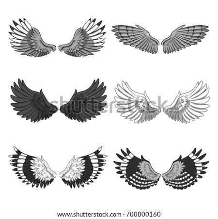 Collection of 6 pairs of elegant bird or angel spread wings isolated on white background. Symbol of flight and freedom. Monochrome vector illustration for logo, banner, advertisement, tattoo.