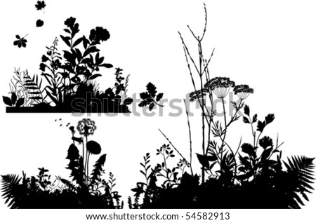 Collection of plants.  All elements and textures are individual objects. Vector illustration scale to any size.
