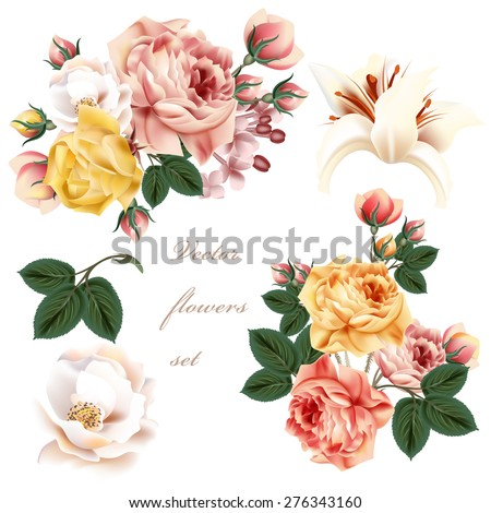 Collection of realistic pastel flowers - stock vector