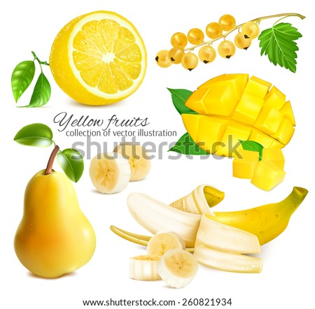Collection of ripe fresh yellow fruits. Vector illustration